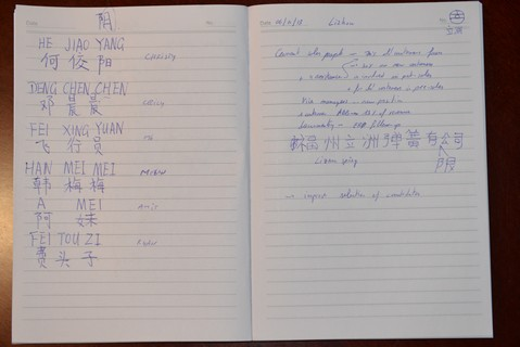 Notes in Chinese