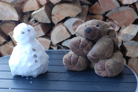 Little snowman and Teddy